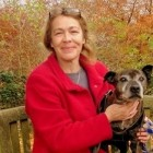 Dog Missing for Nine Years Finally Reunited with Owner