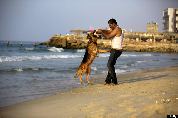PALESTINIAN-GAZA-ANIMALS