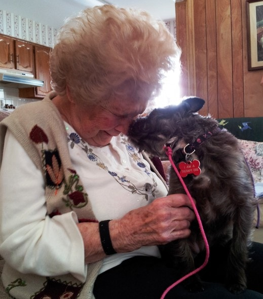 Biscotti-and-Eleanor Pet Mayor