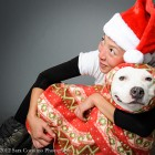 Rescued Pit Bull's Legacy Lives On in Holiday Calendar