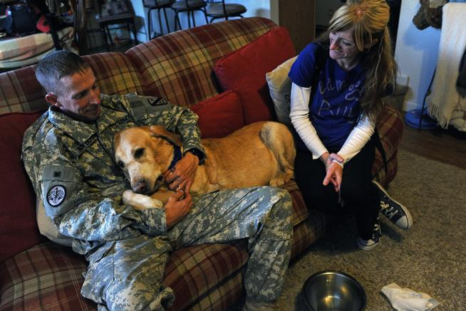 Dog Dying of Cancer Lives to See Soldier Again and Provide Comfort