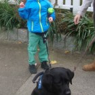 Autistic Boy Reunited with Missing Service Dog
