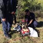 Missing Dog Rescued by Firefighters