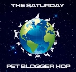 The Saturday Pet Bloger Hop: Swan Song