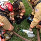Firefighters Save Family's Beloved Dog from Fire