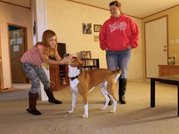 12.18.13 - Adopter Returns Tornado Dog3