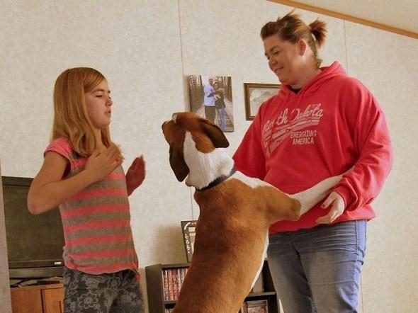 12.18.13 - Adopter Returns Tornado Dog6
