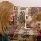 Good Samaritans Catch Dog Missing for Two Years