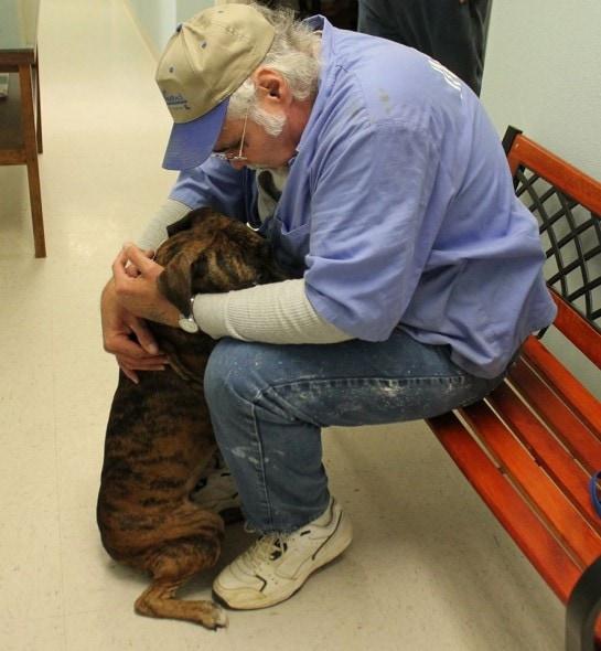 Dakota being comforted by a volunteer. Photo Credit: Sabine Humane Society Animal Shelter