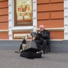 Adorable Musical Duo: Street Musician Adopts Stray Dog