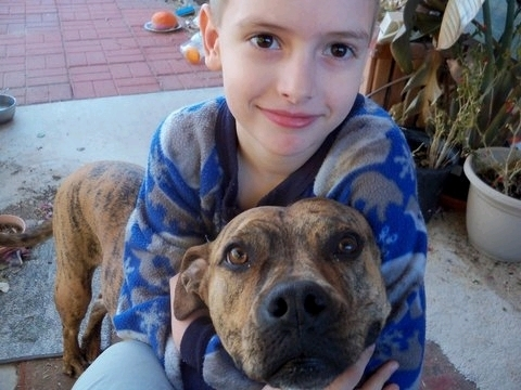 Bella the Special Needs Dog Helps Nathan Heal
