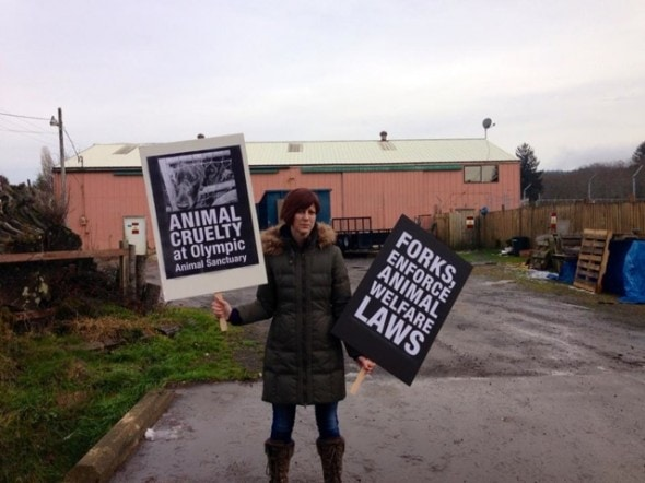 Peaceful protest outside Olympic Animal Sanctuary.