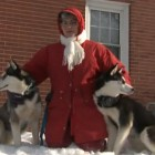 Lost Siberian Huskies Reunited with Owner