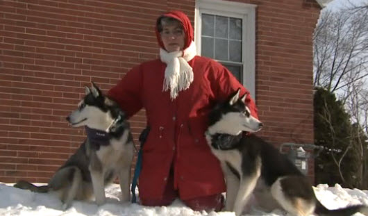 Janice Tuetchidjian and the two Siberian Huskies she found and help reunited with their owner.
