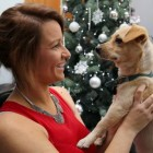 A Stray Dog Rescued in Time for Christmas