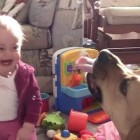 Babies Laughing at Dogs Eating Bubbles Compilation 2013