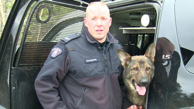 Police Dog Saves Lost Elderly Man