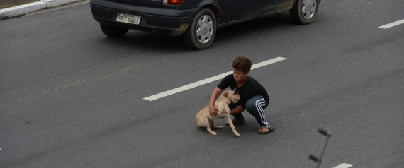 Young Boy Risks Life to Save Dog Hit by Car