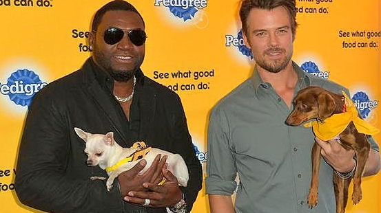 Celebrities Team up to Promote Shelter Dog Adoption