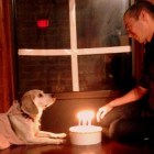 Dog Recreates Famous Love Scenes
