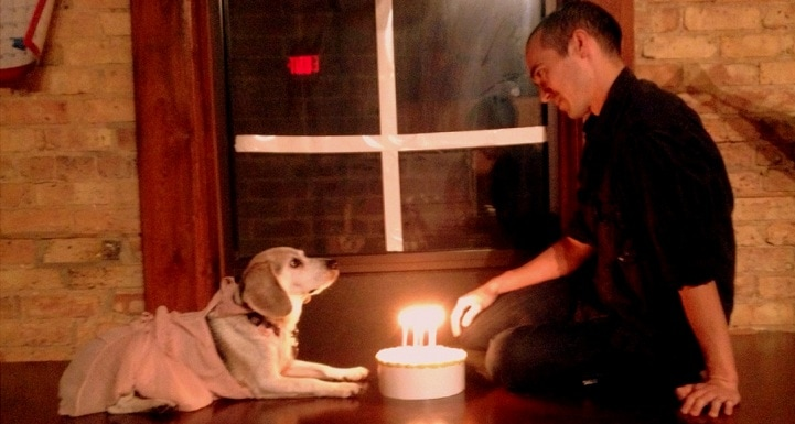 Dog Recreates Famous Love Scenes