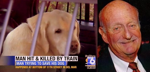 Mayor Sacrifices Himself to Save Dog from Train
