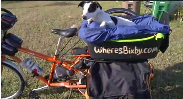 Man and Rescue Dog Travel Cross-Country on Bike