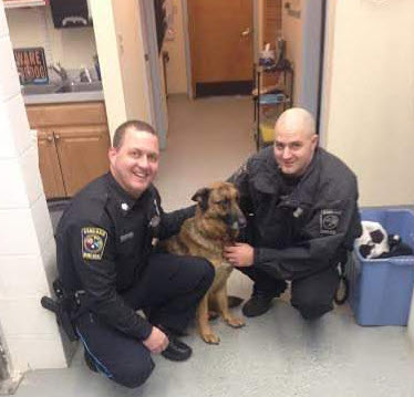 Police Officers Rescue German shepherd from Icy River