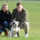 Dog Missing for almost a Decade Reunited with Family