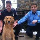 Ellen DeGeneres Thanks Wellesley Fire Department for Heroic Rescue of Dog