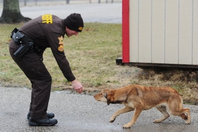Deputy Saves Dog's Life from the Cold