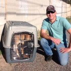 Passerby Saves Dog Trapped in a Fire