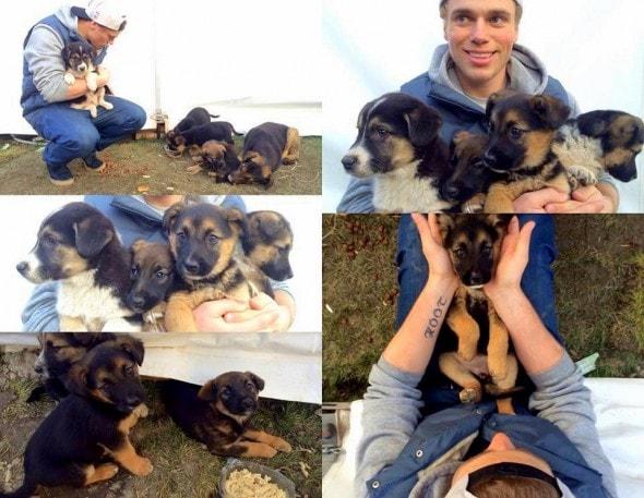2.13.14 - US Skier Adopting Sochi Puppies2