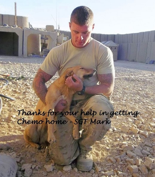 2.13.14 - Woman Reunites Soldiers with Dogs5