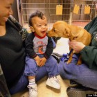 Toddler and Rescue Dog With Same Neurological Condition Bond