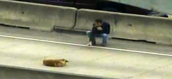 2.28.14 - Man Saves Dog on Busy Highway2