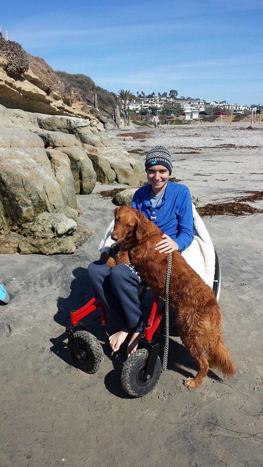 Ricochet the Surf Dog Grants Wish of Terminally Ill Teen