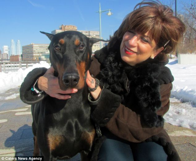 Doberman Alerts Owner to Cancer