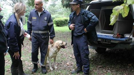 Search and Rescue Dog Locates Lost 2-Year-Old Boy