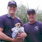Two-Month-Old Puppy Gets Rescued from Well
