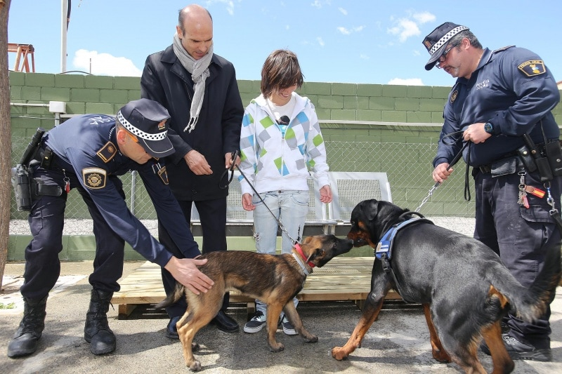 Police Dogs Help Dog Bite Victim Get Over Dog Phobia