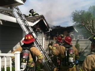 Dog Rescued from Modesto Blaze