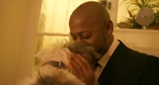 This Ad Is Proof that Dogs Make Everything Better