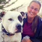 3.13.14 - Family Chooses Homelessness over Abandoning Pit Bull3