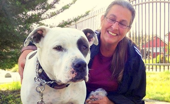 Family Chooses Homelessness over Abandoning Pit Bull