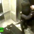 Rottweiler Survives Elevator Hanging