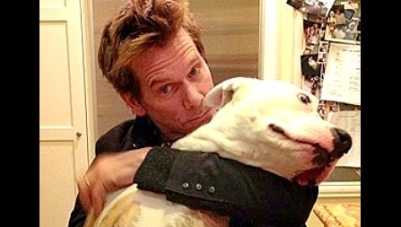 Celebrities You Didn't Know Were Pit Bull Lovers