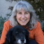 Dr. Nancy Kay Discusses Being Your Pet's Medical Advocate