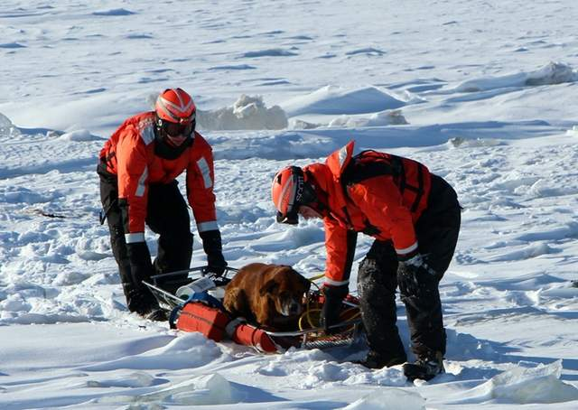 Dog Rescued from Frozen Lake by Coast Guard