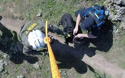 Sheriff's Helicopter Rescues Dog From Cliff
